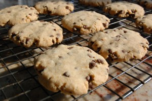 """My Cake"" Allergy Free Chocolate Chip Cookies"